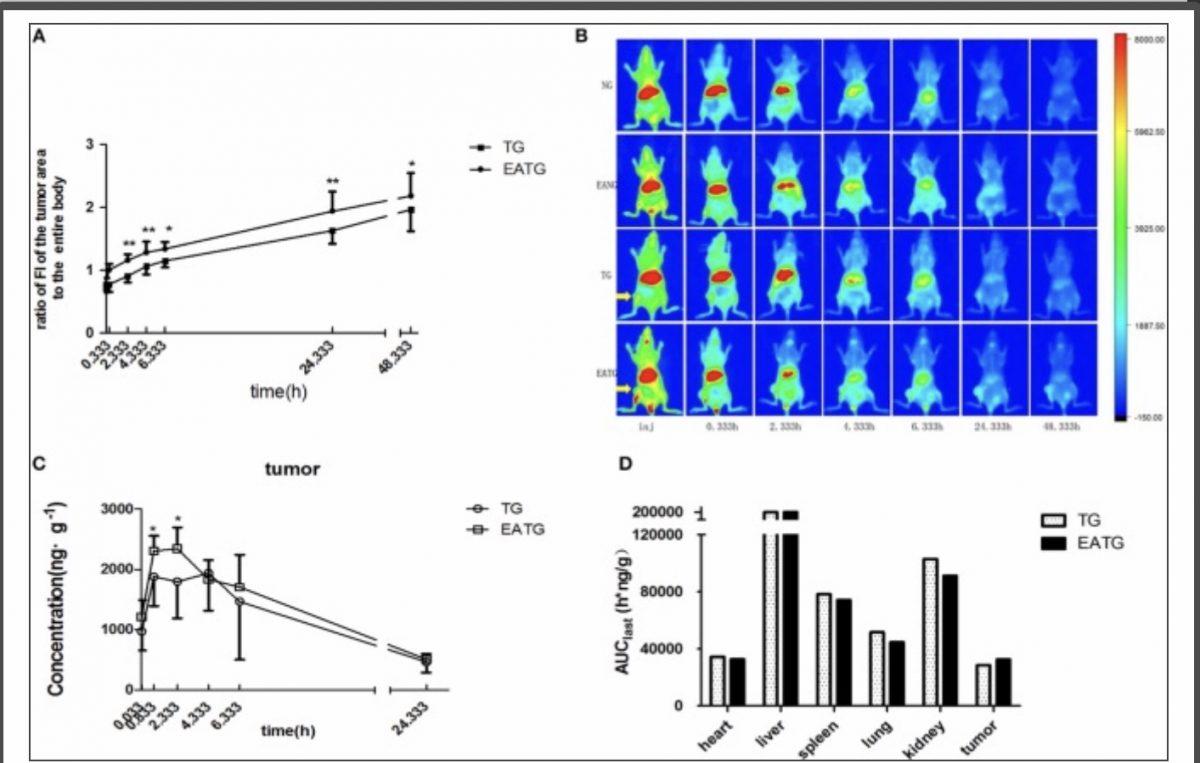 La electroacupuntura (EA) puede aumentar la concentración de agentes quimioterapéuticos en el área del tumor e intratumoralmente, aumentando el efecto del Paclitaxel.