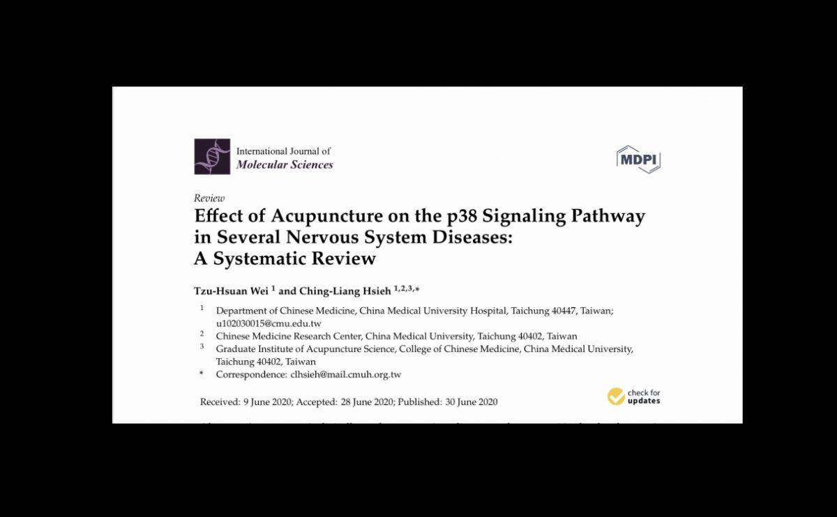 Efecto de la Acupuntura sobre la vía de señalización p38: una Revisión Sistemática